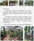 Центральный сибирский ботанический сад СО РАН