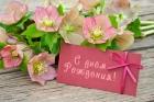 Поздравляем с днем рождения Терехову Н.П.