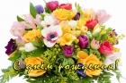 Поздравляем с днем рождения Романову С.А.